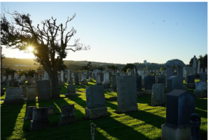 Why Are So Many Dead San Franciscans Buried in This Tiny Bay Area Town?